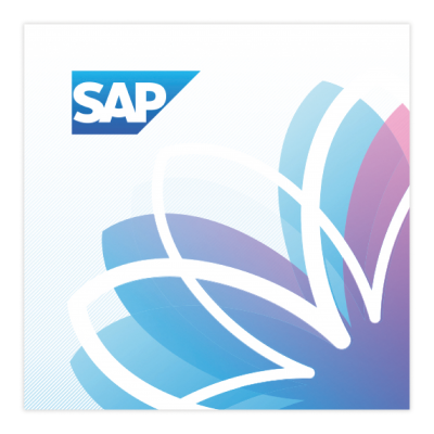 SAP DMS Interface - Netcare International