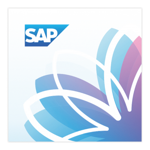 SAP DMS Netcare International