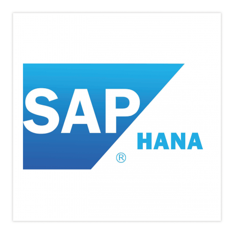 SAP Hana Netcare International